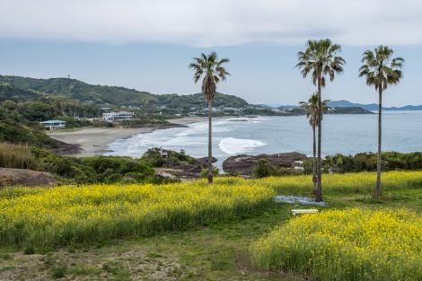 Great beaches in Miyazaki