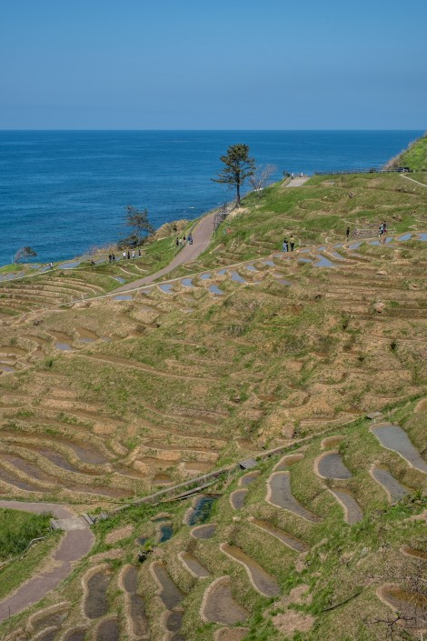 Senmaida rice terraces, Noto Peninsula
