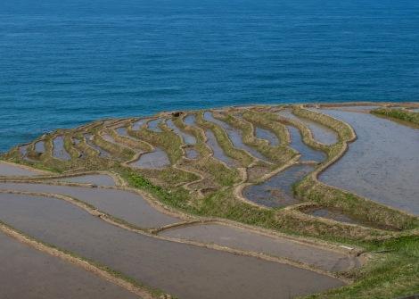 Senmaida rice terraces, Noto Peninsula