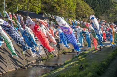 There were hundreds of carp kites here which are displayed for Children's Day on May 5