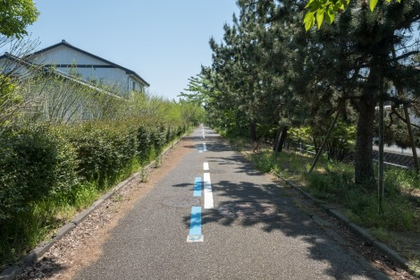 Toyama coastal cycling route