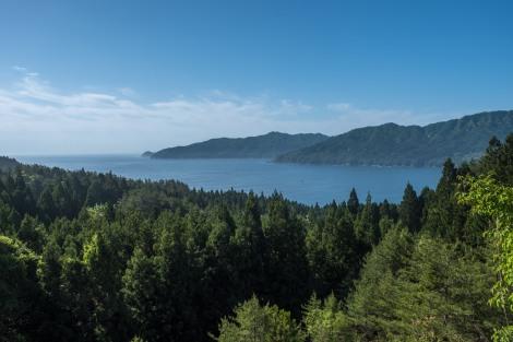 Stunning pine-studded coastline near Kamaishi
