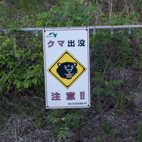 Bear warnings