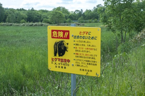 According to this sign, a bear was last sighted here on the 12th May