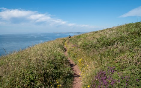 It's a gorgeous day, if not a little hot, to be walking the Pembrokeshire Coast Path!