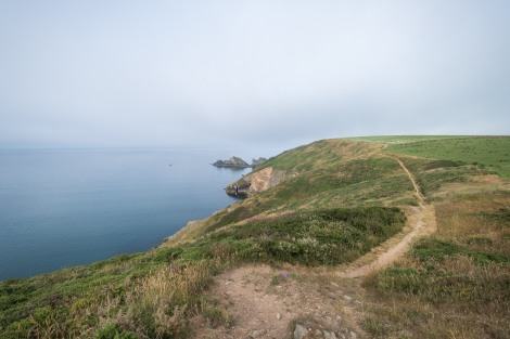 The trail is easy to distinguish on the Pembrokeshire Coast Path