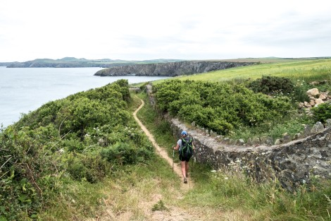 Following an old wall along the Pembrokeshire Coast Path