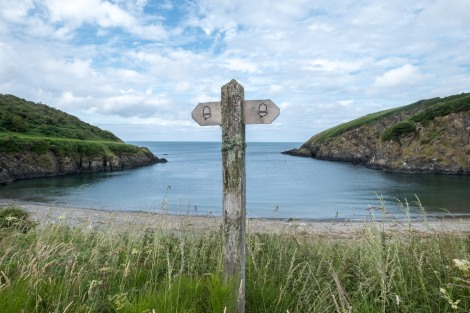 Following the acorns, Pembrokeshire Coast Path