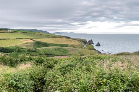 Fields and coastline on the Pembrokeshire Coast Path
