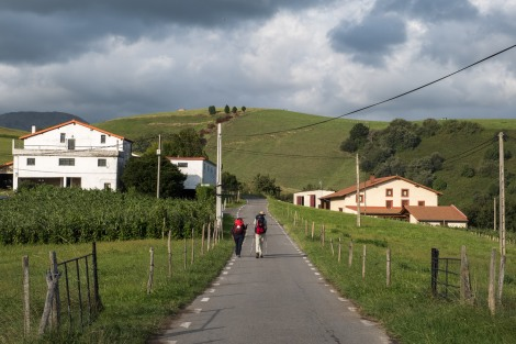 I rejoined the Camino (slightly inland) and passed fields and farms