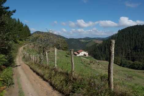 Basque countryside views