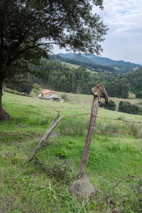 A forgotten boot on the Camino del Norte