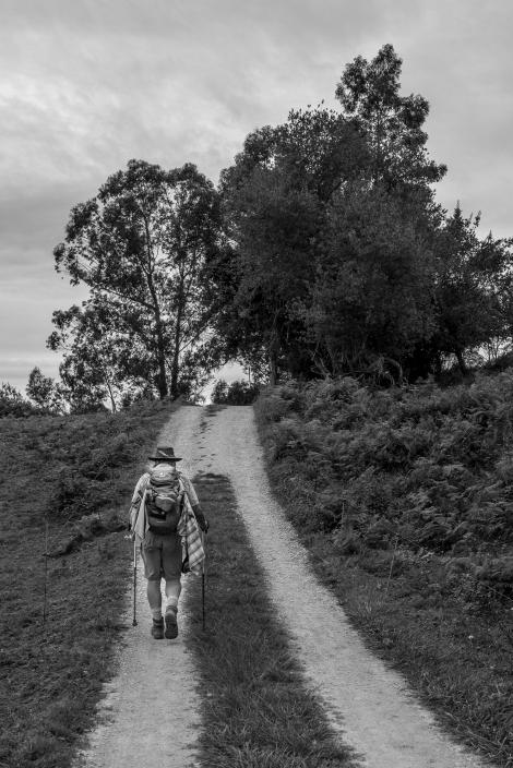 A pilgrim on the Camino del Norte