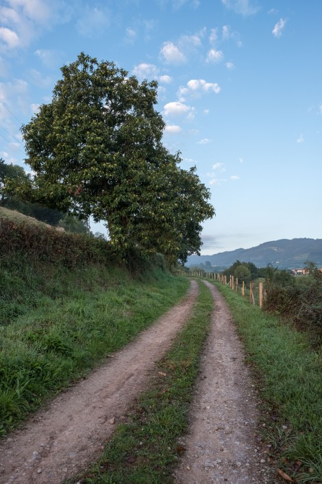 Blue skies and countryside on the Camino del Norte