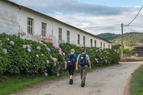 Pilgrims from Denmark walking the Camino del Norte