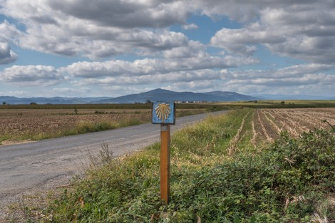 A Camino waymark and views for miles