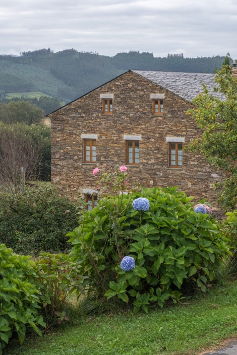 Hydrangeas, roses and a beautiful Galician farmhouse