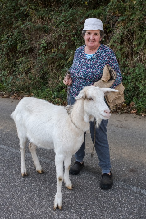 A local and her gorgeous goat