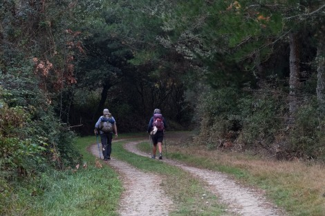 Pilgrims walking along the Camino del Norte