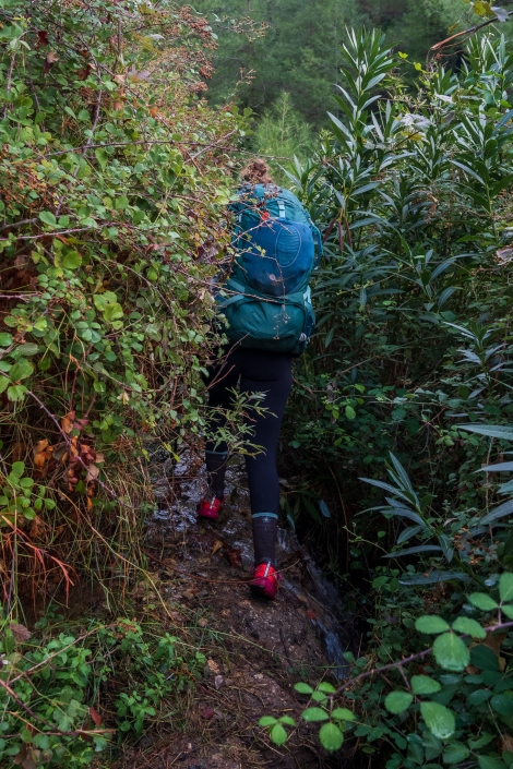 Sarah pushing through the brambles on the Lycian Way