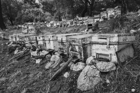 Beehives on the Lycian Way