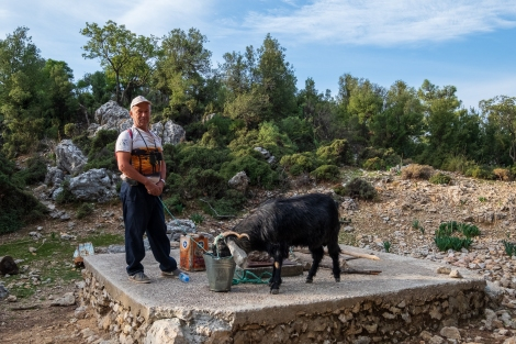 A local shepherd on the Lycian Way