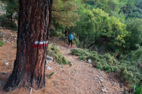 Following the red and white GR-style blazes on the Lycian Way